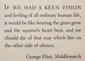 Middlemarch quote